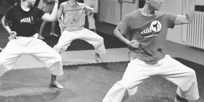 Upis članova u našu karate školu