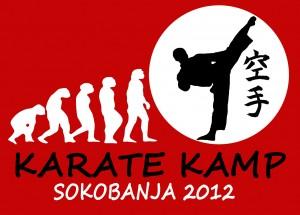 soko-banja1
